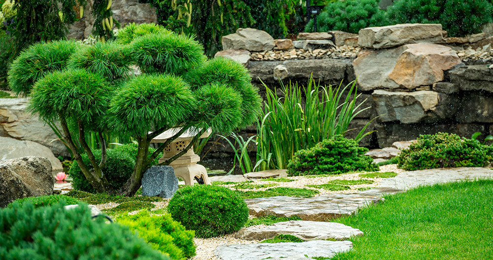 5 Important Things to Know Before you Redesign your Landscape | Greenstreet  Gardens